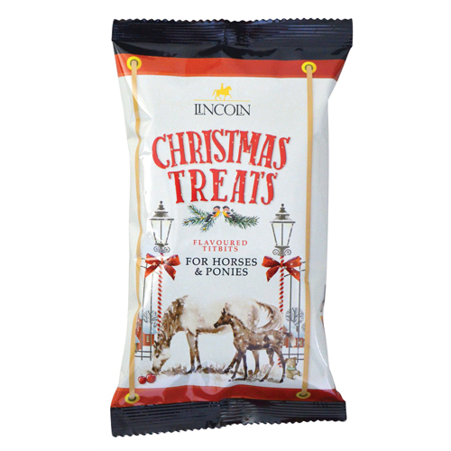 Lincoln Christmas Horse Treats