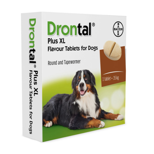 Drontal Dog *XL* Single Tablet